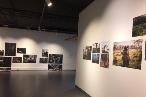 Webb Gallery 04