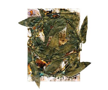 Renata Artwork1