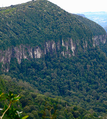 A close up view from the Best of All Lookout with Mt Springbrook in the foreground.