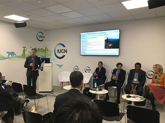 Prof Mackey presenting at COP23 side event
