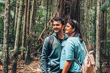 Students bushwalking through a rainfores